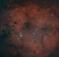 2010ic1396ps