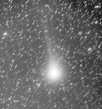 2013001105lovejoy40xxx60mixdpps