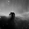 馬頭星雲 Hα