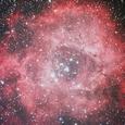 バラ星雲 125SDP